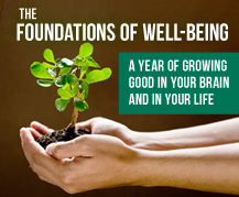 Foundations of Well-Being